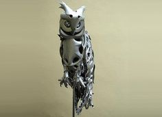 steel owl
