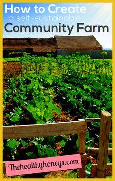 How to Create a Self-Sustainable Community Farm - The Healthy Honeys