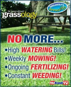 Grassology Reviews | Learn Everything About This New Premium Low Maintenance Grass Seed!