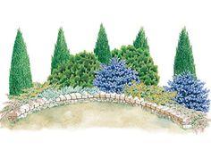 Evergreen Screen Garden Plan - zone 8