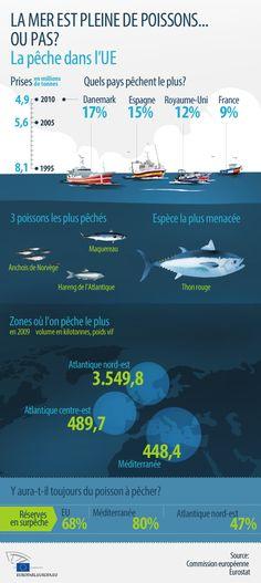 """Rodust: """"La nature et les pêcheurs bénéficieront de l'arrêt de la surpêche"""""""