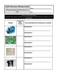 Printables Characteristics Of Life Worksheet characteristics of life worksheet plustheapp amp structures living or non living