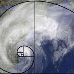 IMMENSE Sandy