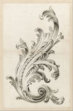 File:Alexis Peyrotte - Acanthus Leaf Design - Google Art Project.jpg This is an acanthus leaf used in Roman Architecture
