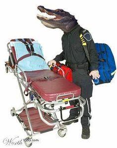 Gator-Aid