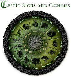 Celtic signs & Oghams
