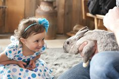 Bunnies + Goats + Kids = Cute Explosion | Canadian Dad goat, kid