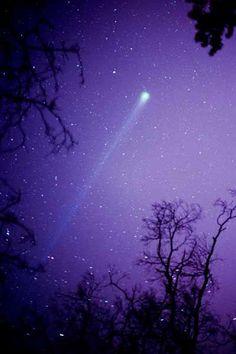 Comet Hyakutake  this beautiful comet graced the skies in 1996  fabulous photo!!!