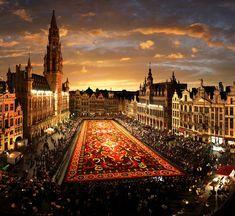 beauti place, grand place, flower carpet, carpets, belgium, travel, places, flowers, brussels