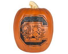 Gamecock Pumpkin  #USC #UniversityofSouthCarolina #SouthCarolina #Carolina #Gamecocks #GarnetandBlack #TheSouth #South #Carolina