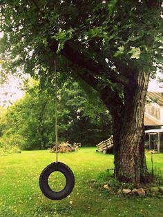 Tire Swing On The Farm