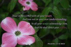 Proverbs 3:5-6 by b4b2, via Flickr