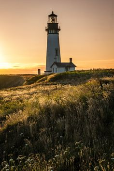 Yaquina Head Lighthouse. It really does look like this.