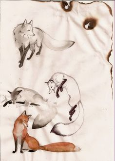 My fox by ~Orphen-Sirius on deviantART