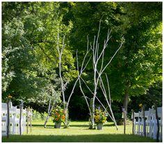 treebranch ceremony backdrop