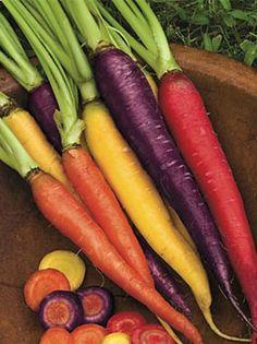 Kaleidescope carrot mix
