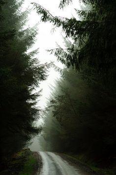 Rainy roads