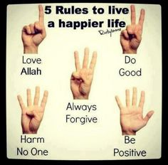 islam quot, happi life, inspir quot, islam branch, islam word