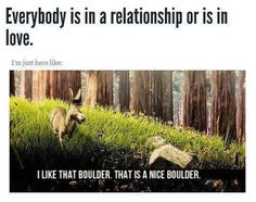 being single, nice boulder, life, laugh, daily quotes, donkey, funny stuff, true stories, shrek quotes
