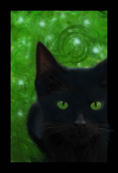 Gypsy Magic: The Cat as a Magickal Ingredient