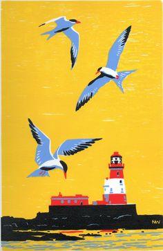 3 terns - Nick Wonha