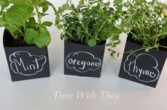 Here's an awesome use of chalkboard paint! Label your homemade herb pots!!