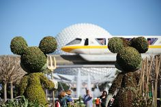 The Best Free Extras At Disney World