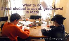 What To Do If Your Student Is Not At Grade Level in Math- A Learn Math Fast System Review