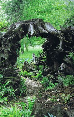 the stumpery, Highgrove  I & J Bannerman - Garden designers and builders.  The Prince of Wales' garden