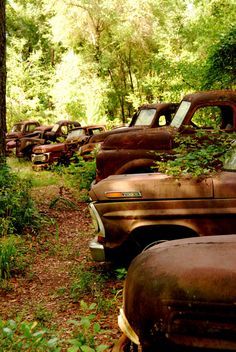 Amazing shots of Vintage Ford Trucks - so unique!
