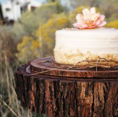 natural woodland cake!