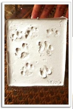 Home made puppy paw print kit