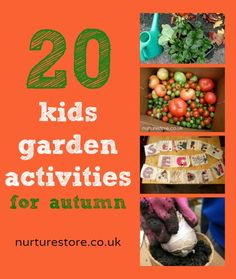 20 ideas you can use over the autumn and winter terms – at home as well as in a school garden – to enjoy the outdoors all year round, with some special activities taken from Kathy James book The Garden Classroom.With ideas for bringing art, craft, science, math, literacy and play to your outdoor space I think you will love The Garden Classroom. autumn garden, garden ideas, art crafts, kid garden, math literacy, fall gardening ideas, outdoor spaces, schools gardens, school gardens