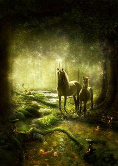 #fantasy #unicorn