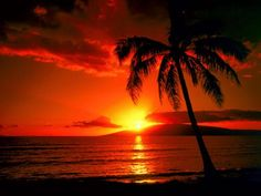 Hawaii--to see the beautiful beaches and sunsets :)