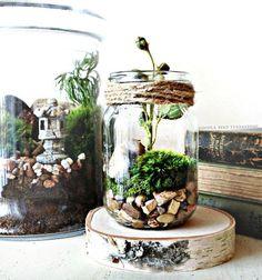 Mason jar terrarium - interesting centerpieces and great as wedding favors #wedding #woodland #diywedding #centerpiece #weddingfavors