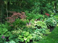Great garden in the shade!