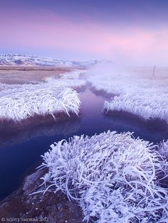 Icy Hot; photograph by Scott Smorra. Sunrise light at Borax Hot Springs in the Alvord Desert of Oregon. Titled Icy Hot since the air temp was 5 degrees F and the water temp in the hot spring is 180 degrees F.