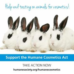 Take action to end cruel cosmetics tests on animals in the U.S.! #BeCrueltyFree #HumaneCosmeticsAct