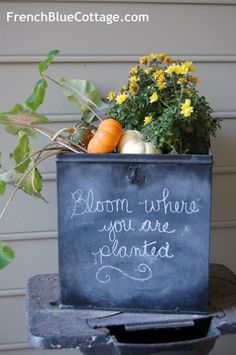 Chalkboard Planter - one of 12 unique chalkboard ideas eclecticallyvintage.com (think I'd just do a planter with a painted quote on it but interesting idea)