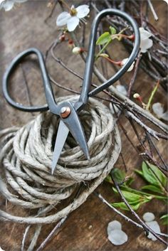 tools and twine