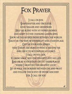 Spirit Totem Animals:  Fox Prayer.