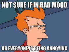 daily basis.