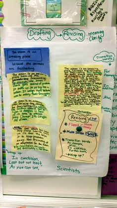 teaching expository writing 3rd grade
