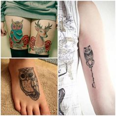 Owl / hart
