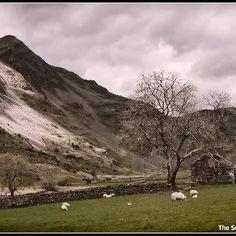Cnicht, Moelwynion mountains, Snowdonia