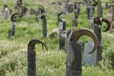 Cemetery, Turkmenistan
