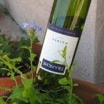Water Your Garden with Wine Bottles
