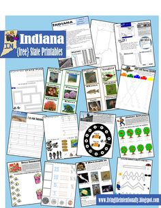{free} State of Indiana Printable Pack including facts at a glance, mapping, graphing, Indy 500, Johnny Appleseed, Orville Popcorn, Nocturnal Farm Animals, and so much more!     This is part of an ongoing series of {free} US State packs  perfect for homeschool, enrichment, or roadtrip learning FUN!!  www.livinglifeintentionally.blogspot.com