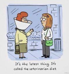 LOL http://www.draxe.com #draxe #healthcomedy #funnycomic